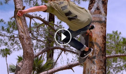 40sk8-william-royce-skate-everything-Destacada