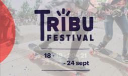 40sk8-festival-tribu-destacada