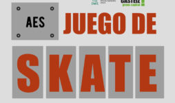 AES Juego de Skate clasificatoria Euskadi